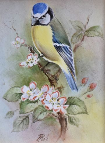 Raymond Poole Porcelain Picture Of A Blue Tit Bird (Royal Worcester Artist)